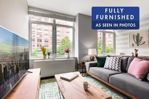 pet friendly apartments in nyc and nj pets allowed rentals